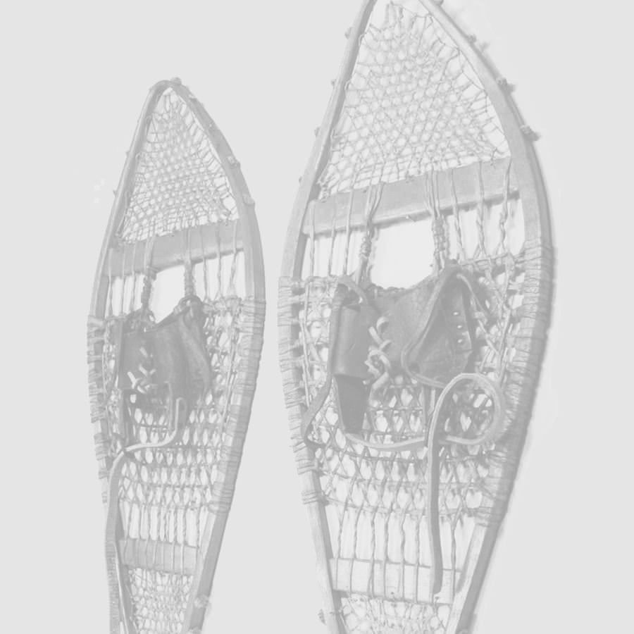 Picture for category Snowshoes