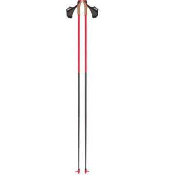 Picture of ROSSIGNOL CROSS COUNTRY SKI POLES FORCE 10