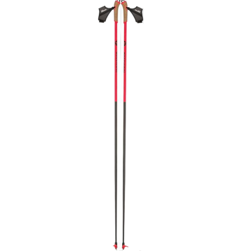 Picture of ROSSIGNOL CROSS COUNTRY SKI POLES WCS